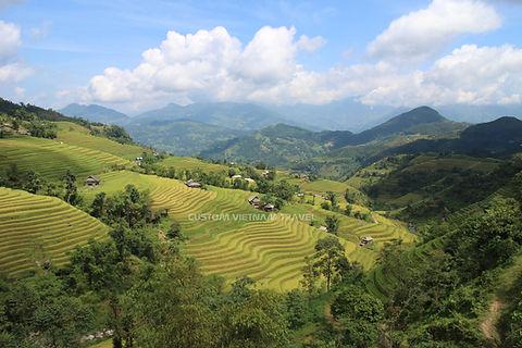 Ha Giang Travel Guide Hoang Su Phi Terraces