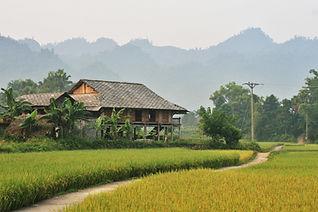 stilt house of Tay people