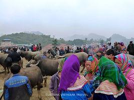 Bac Ha animal market.jpg