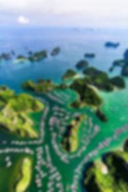 Ha Long Bay - Top 10 Must-see Destinations in Vietnam.jpg