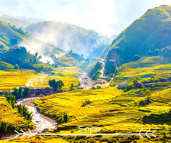 Sapa-Breathtaking Beauty Of Rice Fields.