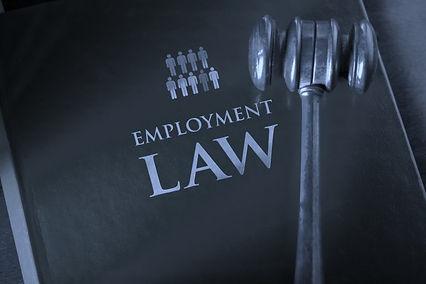2 employment law - chr theodorou.jpg