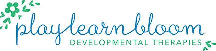 Play Learn Bloom, occupational therapy child wynnum