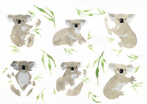 Koala pattern.jpg