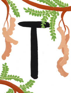 T is for Tamarind