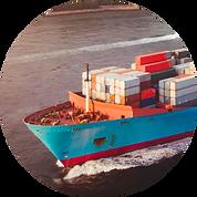 importacion-boton.png