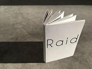 RAID_THEBOOK_D12.jpg