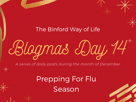 Blogmas Day 14 : Prepping For Flu Season