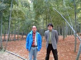 京都府産たけのこ 長谷川さん