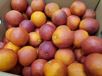 ブラッドオレンジ2.jpg