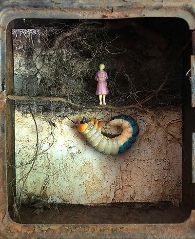 Nicole_Schoepflin_nature_roots_underground_earth_grub_soil.jpg