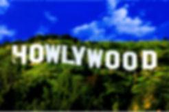 Howlywood_Sign_4233_-softfocus.jpg