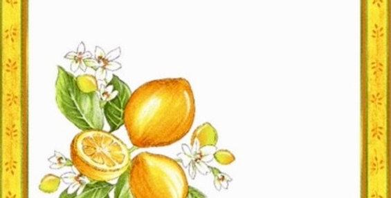 French Napkin Cotton White Citron