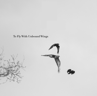 To Fly With Unbound Wings