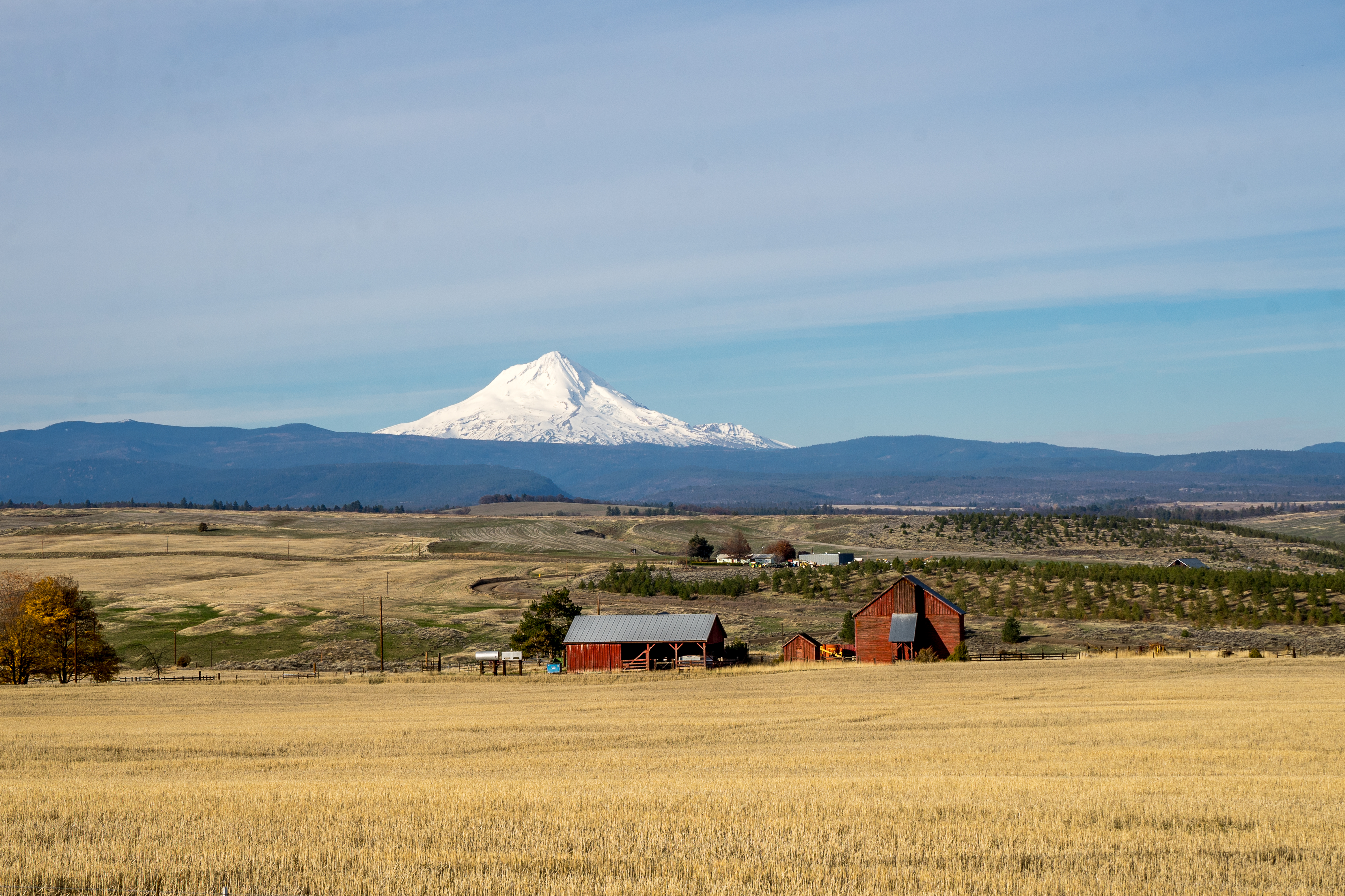 Mt Adams from Oregon