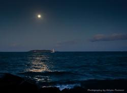 Moonlight sail.jpg
