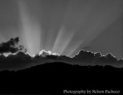 Sunbeams over Rain Forest