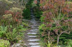 Irish Steps.jpg