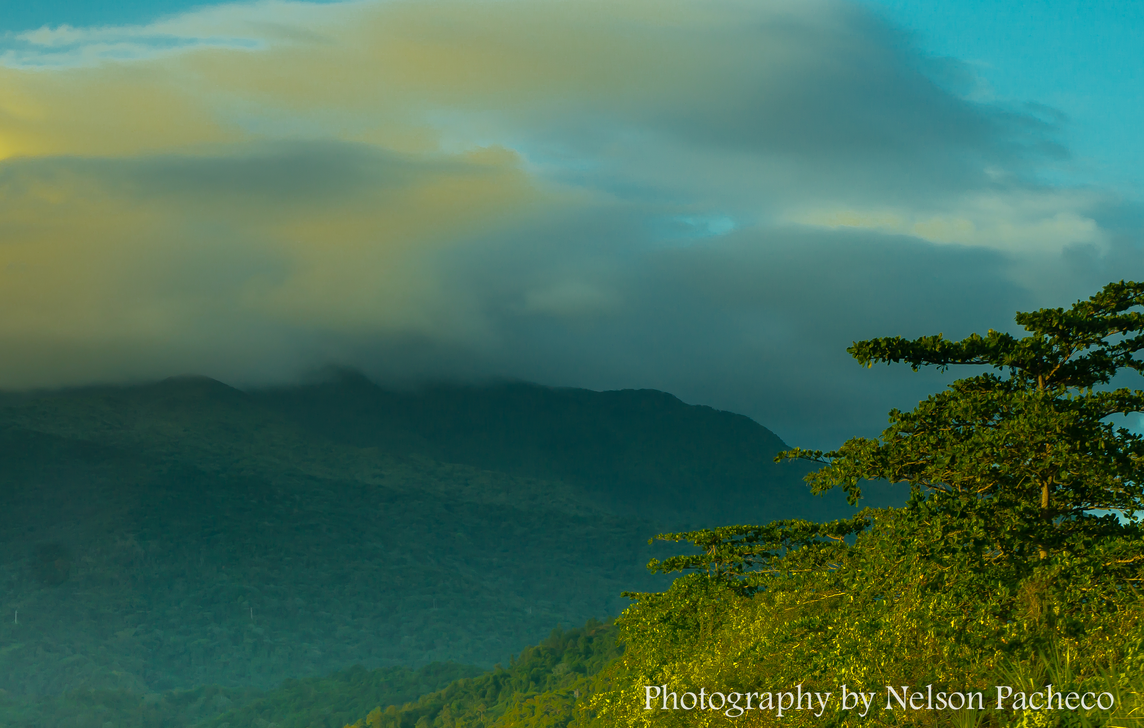 Pico del Este.jpg