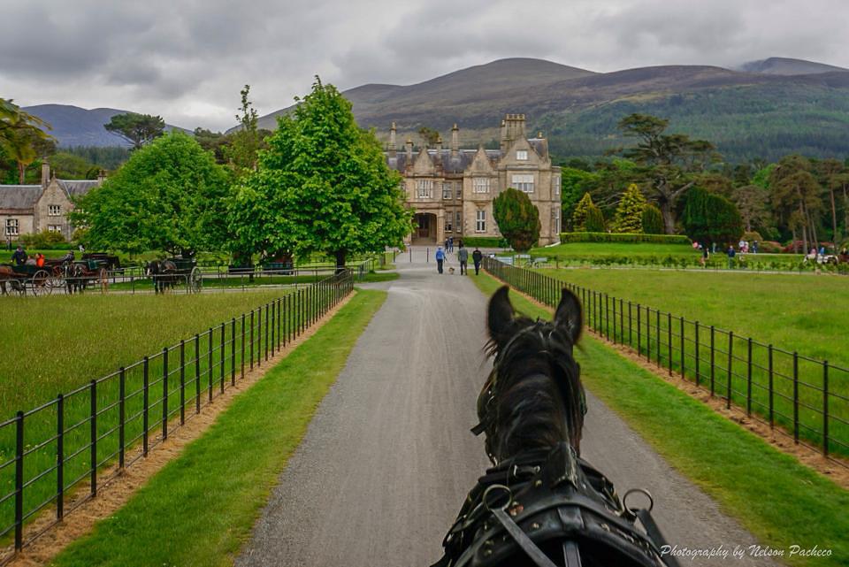 Irish Villa.jpg