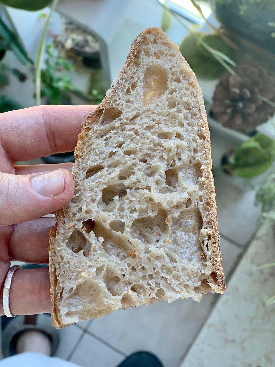 מתכון מדריך מפורט מלא להכנת לחם שאור מחמצת בריא
