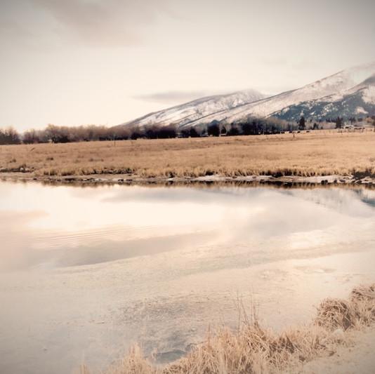 Meadow & Pond at Meadowlark Inn