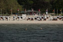 Strand Sandwig
