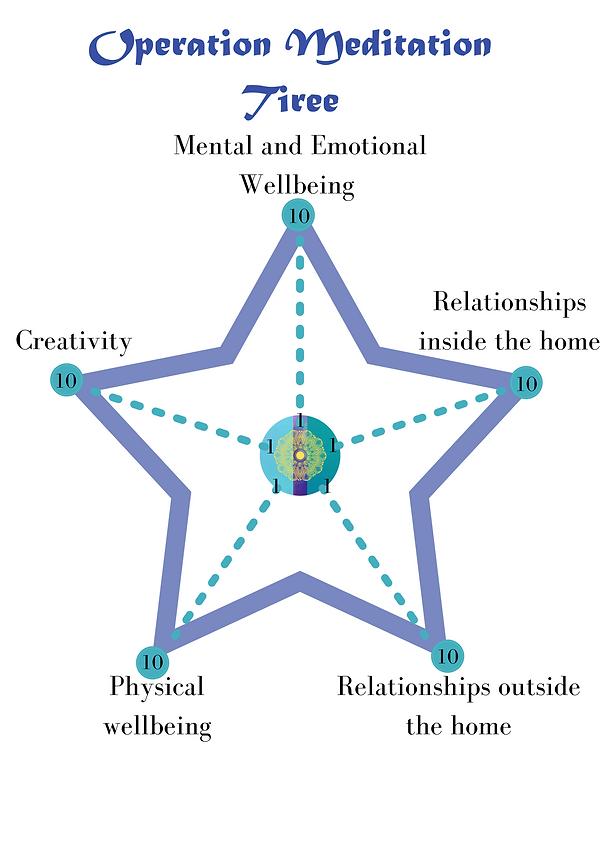 Operation Meditation Evaluation Star (1)