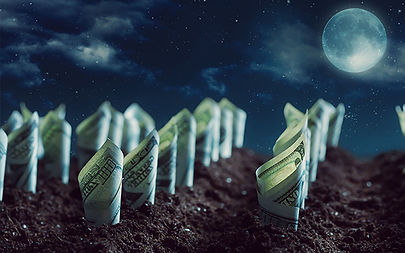 moneygrowth.jpg