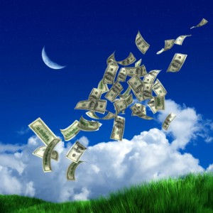 money_nature_iStock_000005869341XSmall-3