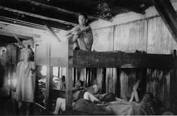 Prison/Camp Research