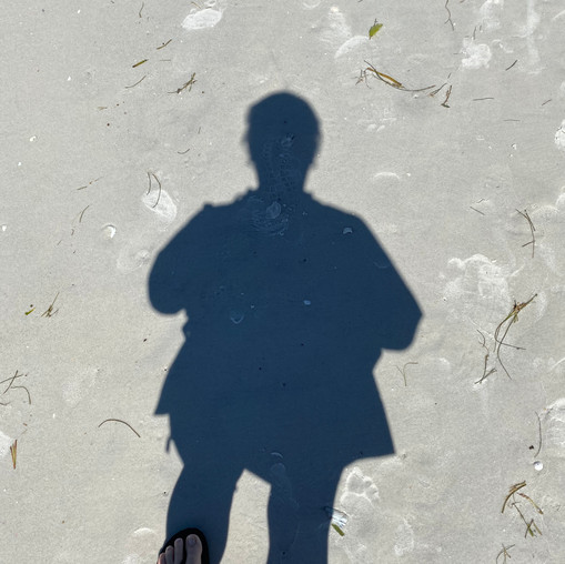 Find your shadow!