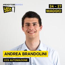Andrea Brandolini.jpg