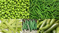 Les multiples bienfaits des fruits et des légumes crus