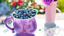 Santé des seniors : les bienfaits des fruits de saison dans l'alimentation des personnes âgées