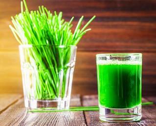 Le jus d'herbe d'orge, comment le faire soi-même à la maison ?