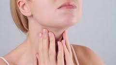 La thyroïde et ses fonctions