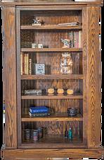 American Concealed Hidden Gun Bookcase