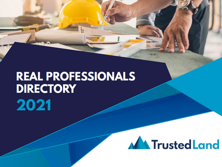 Build-Zone and the 2021 Real Development Professionals