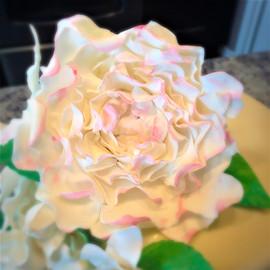 Gumpaste Peony Flower