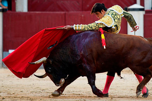 A matador with a red flag alongside a bull