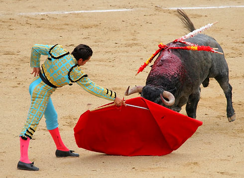 A matador with a red flag, waving it in front of a bull