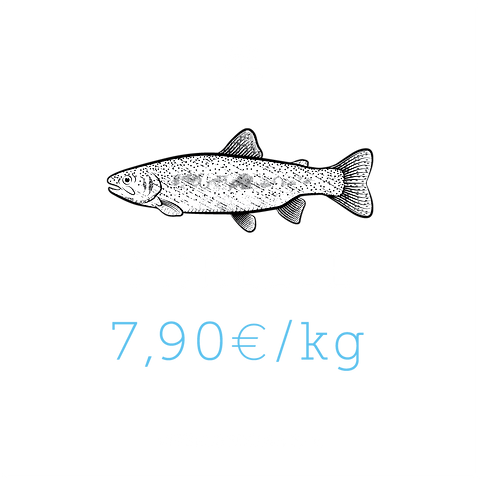 Forelle.png
