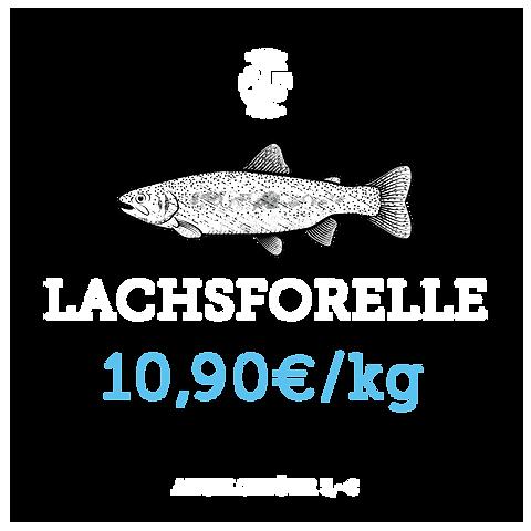 Lachsforelle.png