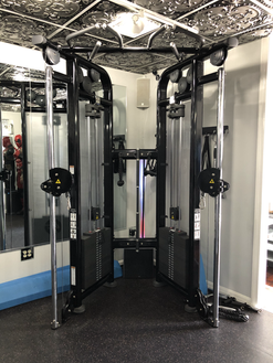 Eppinger Fitness : Life Fitness Cable Ma
