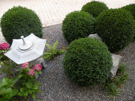 jardin8.jpg