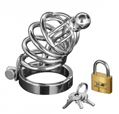 Masters Series... Asylum | 4 Ring Locking Chastity Cage
