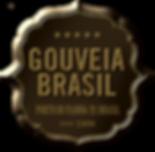 Gouveia Brasil São Paulo