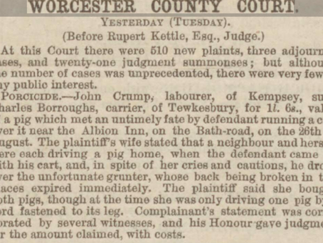 Driving a pig along the Kempsey road (a sad case of porcicide)