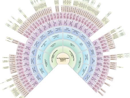 Ari's fan chart (just because it's pretty!)